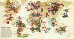 The World of Flowers, May 1968. http://www.atlasobscura.com/articles/see-the-most-captivating-infographics-of-the-last-century?utm_source=Atlas+Obscura+Daily+Newsletter&utm_campaign=c25c22552d-Newsletter_12_22_16&utm_medium=email&utm_term=0_f36db9c480-c25c22552d-63203845&ct=t(Newsletter_12_22_16)&mc_cid=c25c22552d&mc_eid=bb8db3a6a5