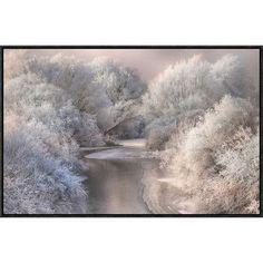 "Global Gallery 'Winter Song' by Sebestyen Bela Framed Photographic Print Size: 19.5"" H x 30"" W x 1.5"" D"