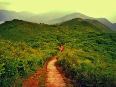 Hiking: Dragon Back - Hong Kong