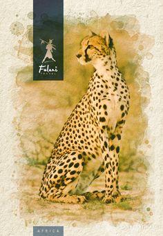 South Africa - Infografía para catálogo de viajes Giraffe, Illustration, Animals, Visual Identity, Sun Art, Photo Retouching, Visual Arts, Graphic Art, Digital Art