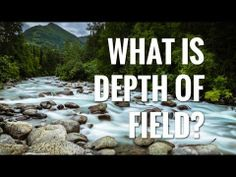 A Simple Guide to Depth of Field What Is Depth, Simple Photo, Depth Of Field, School Photos, Tv, Photography, School Pictures, Photograph, Television Set