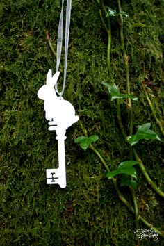 rabbit key