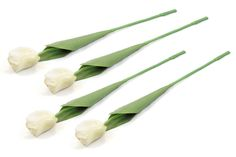 DII Artificial Silk Craft Flowers for Bouquets, Weddings, Wreaths, and Crafts, Single Tulip Stem - Set of 4 White -- Learn more by visiting the image link.