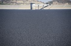 96m black polythene balls covering a reservoir in Sylmar, California, to protect against evaporation.
