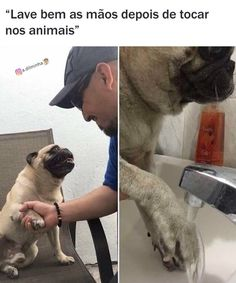 English Memes, Funny Spanish Memes, Spanish Humor, Bad Memes, Dankest Memes, Funny Face Swap, Image Memes, Love Words, Animal Memes
