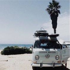 Summer Road Trip Feels like !!!! . . . . . . . . . . . . . . . #lovesparkleshine #loveandpieces #summer #road #trip #feels #palmtrees #california #vw #van #ocean #travel #vacation #Sunshine #regram #happy #fashionblogger #styled #obsessed #picoftheday #sand #beach