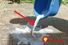 How To Clean Outdoor Brick and Other Pavers - Better Outdoor Living at Home The product we used in this paver cleaning post was Stain Solver oxygen bleach. It is available online. Deep Cleaning Tips, Natural Cleaning Products, Cleaning Hacks, Cleaning Solutions, Outdoor Projects, Garden Projects, How To Clean Brick, Clean Patio, Brick Driveway