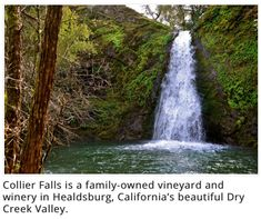 Collier Falls is a family-owned vineyard and winery in Healdsburg, California's beautiful Dry Creek Valley.