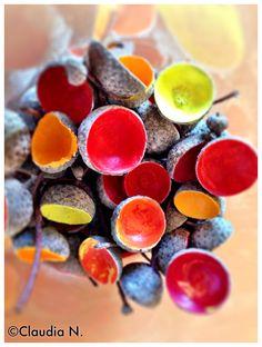 Bemalte Eicheln mit Acrylfarbe!