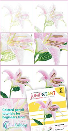 Drawing flowers for beginners - Jumpstart colored pencil tutorial using Prismacolors.