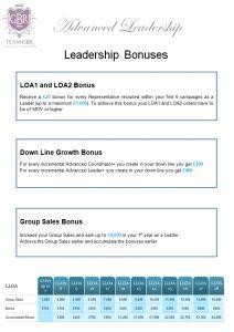 avon pay plan, avon commission structure, avon compensation plan, avon bonuses, avon bonus
