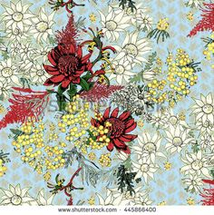 Find Australian Native Flowers Group Seamless Repeat stock images in HD and millions of other royalty-free stock photos, illustrations and vectors in the Shutterstock collection. Australian Wildflowers, Australian Native Flowers, Wildflower Drawing, Flannel Flower, Rainbow Serpent, Kangaroo Paw, Native Australians, Flower Backgrounds, Fabric Painting