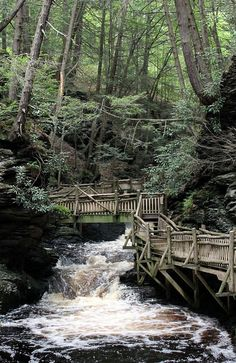 Bushkill Falls, Pocono Mtns, PA. Fred and I went here - we vacationed at a friend's house. There are different trails leading to different falls, each trail is a different level of difficulty. We stuck to easy. LOL