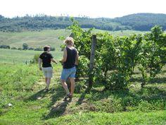 Hongarije, wijnen en meiden ….morgen in Studio Smaak van Wijn, de eerste Soester Wijnschool!