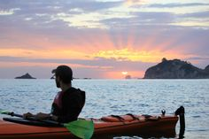 Kayak through sea caves, interact with local marine life including Dolphins & discover the thrill of kayak paddling Sea Kayak, Kayak Paddle, Marine Reserves, Kayak Tours, Kayaks, Marine Life, Caves, Tour Guide, The Locals