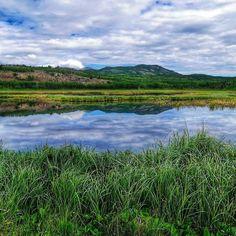 #tbt to all the hiking we did in Yukon... too gorgeous to handle.  #yukon #exploreyukon #greatoutdoors #reflection #nature #travelgram #travel #yourcanada #explore #wander