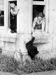 ScotlandPrince Charles and Queen Elizabeth II helping Princess Anne in window at Balmoral Castle.29 April 1953