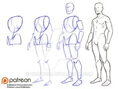 Fullbody Step by step 1 by Kibbitzer.deviantart.com on @DeviantArt