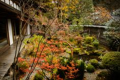 Small Front Garden Housen-in Temple (宝泉院)  --  Housen-in Temple (宝泉院)  --  Kyoto, Japan  --  Copyright 2012 Jeffrey Friedl, http://regex.info/blog/  --  This photo is licensed to the public under the Creative Commons Attribution-NonCommercial 3.0 Unported License http://creativecommons.org/licenses/by-nc/3.0/ (non-commercial use is freely allowed if proper attribution is given, including a link back to this page on http://regex.info/ when used online)