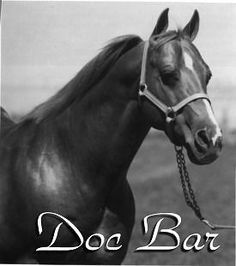 Doc Bar...love this line crossed on some Blue Valentine!!
