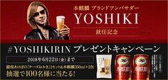 本麒麟|ビール・発泡酒・新ジャンル|商品情報|キリン