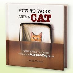 How To Work Like A Cat   The Added Touch Catalogue