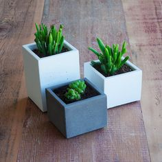 Set Of Three Concrete Succulent Planters, Classic