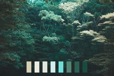 landscape colors nature light blue color palette dark green natural palette landscape palette