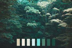 landscape colors nature light blue color palette dark green natural palette landscape palette