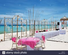 Download this stock image: Luxury wedding setup on a paradise beach - DBRG1T from Alamy's library of millions of high resolution stock…
