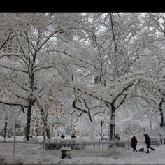This could be my favorite NYC winter picture ever! Just perfect!