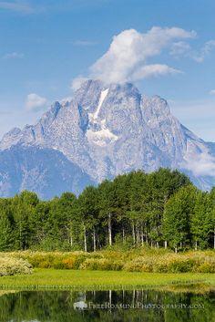 Mount Moran Above Aspen Trees, Oxbow Bend, Grand Teton National Park, Wyoming