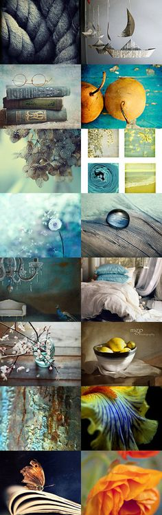 Still Life Gallery by Veroni Peleskova on Etsy--Pinned with TreasuryPin.com