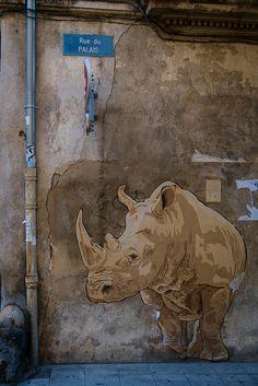 https://flic.kr/p/yd5r1j   A Rhino, Arles