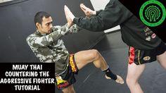 Muay Thai Countering the Aggressive Fighter Tutorial https://www.youtube.com/watch?v=b0bbfLov5bk