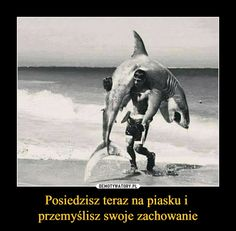 No właśnie! To się nazywa dyscyplina - na każdego coś się znajdzie Funny Quotes, Funny Memes, Jokes, Polish Memes, Everything And Nothing, Life Humor, Wtf Funny, Best Memes, Shark