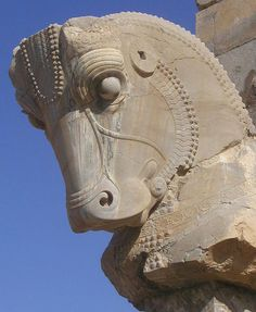 Persepolis Horse, Iran