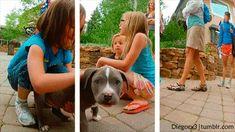 Aw este cachorrito se quiere ir a tu casa: | 25 Asombrosos GIFs 3D que están cerca de tocarte