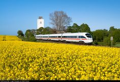 RailPictures.Net Photo: DB AG 605 at Oldenburg (Holst), Germany by Jan-Geert Lukner