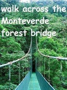 walk across the Monteverde Forest Bridge