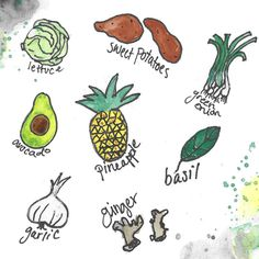 Foods You Can Grow From Scraps!