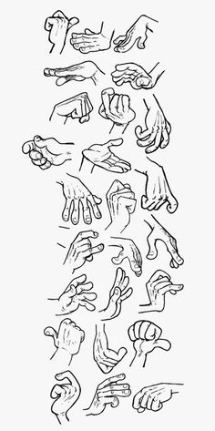 Hand Reference week part 2/3