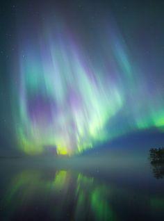Northern lights looking like a skull. Aurora Borealis, Northern Lights, Skull, Photography, Travel, Image, Fotografie, Northan Lights, Photography Business