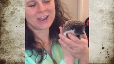 Sweet New Hedghog Oils For Skin, Hedgehog, Connection, Pets, Sweet, Quotes, Candy, Quotations, Hedgehogs