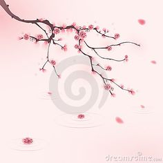 Oriental style painting, cherry blossom in spring by Oriartiste, via Dreamstime