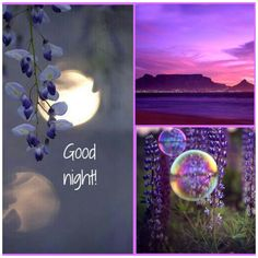 Good night ✨ Good Night Image, Good Morning Good Night, Day For Night, Morning Light, Good Night Quotes Images, Lavender Cottage, Good Night Friends, Good Night Sweet Dreams, Night Wishes
