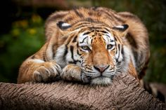 Relax by René Unger on 500px