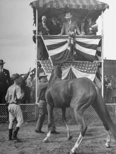 President Harry S. Truman Watching a Horse at the 1945 Missouri Fair