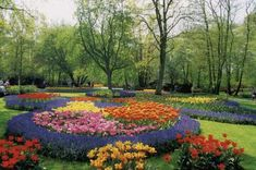 1000 ideas about year round flowers on pinterest for Round flower bed ideas