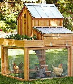 http://www.countryliving.com/outdoor/chicken-coop-designs?src=spr_FBPAGE&spr_id=1453_56055907